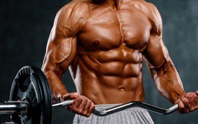 8 Dinge die du über Muskelaufbau wissen solltest